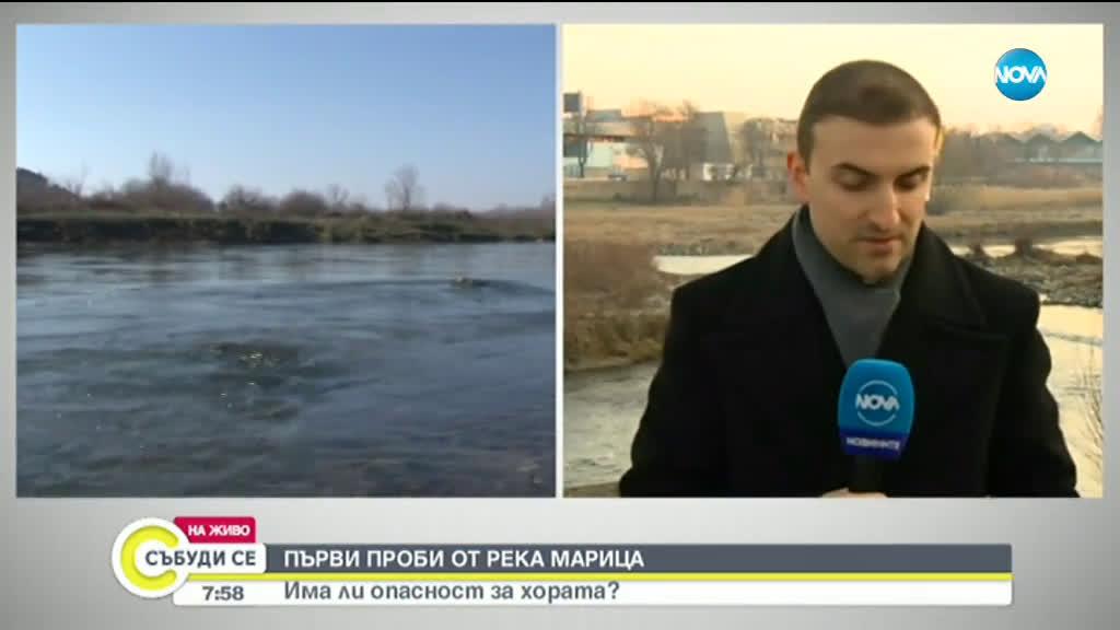 Установиха кой замърси река Марица и изтрови голямо количество риба