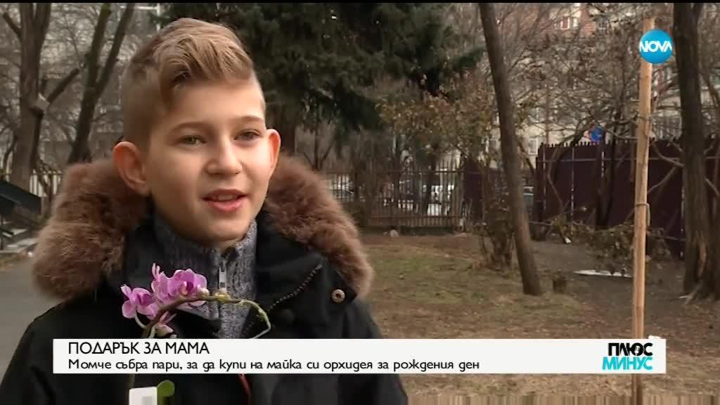 ПОДАРЪК ЗА МАМА: Момче събра пари, за да купи орхидея за рождения ден на майка си