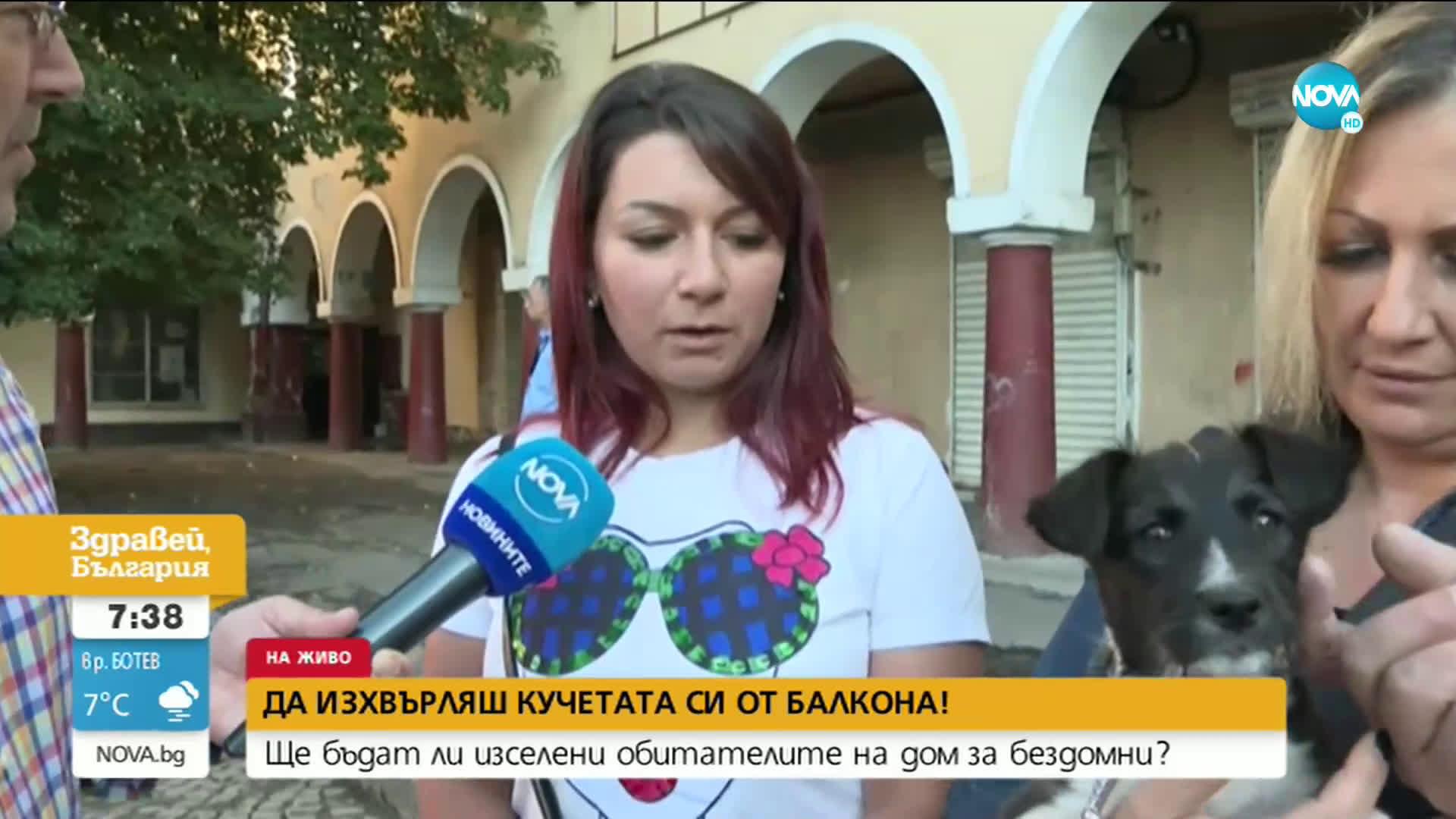 Жители от столичен квартал алармират за изключителна жестокост спрямо животни
