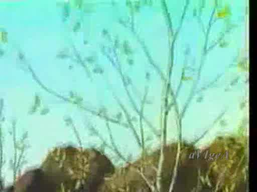 Детски Песнички - Пролет иде