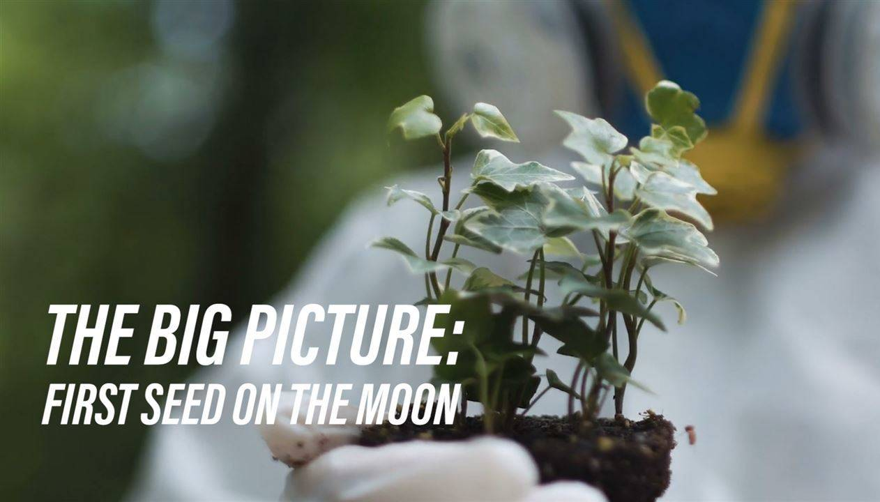 Soon, astronauts might be able to harvest food on the moon