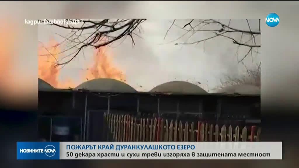 Пожарът в защитената местност Орловото блато е овладян