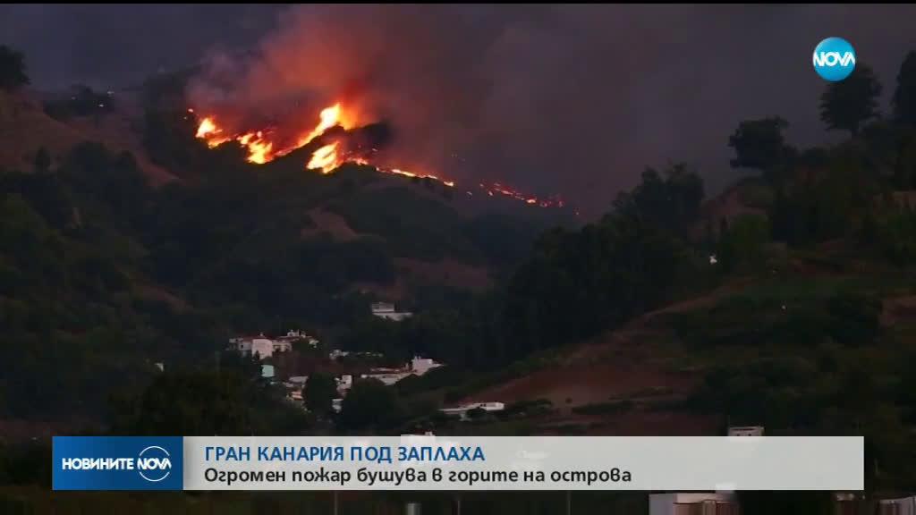 9000 души са евакуирани от Гран Канария заради горския пожар