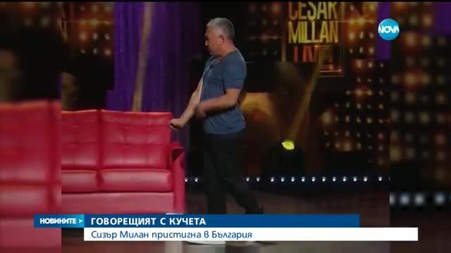 Сизър Милан пред NOVA: Не знам български, но с българските кучета ще се разбера