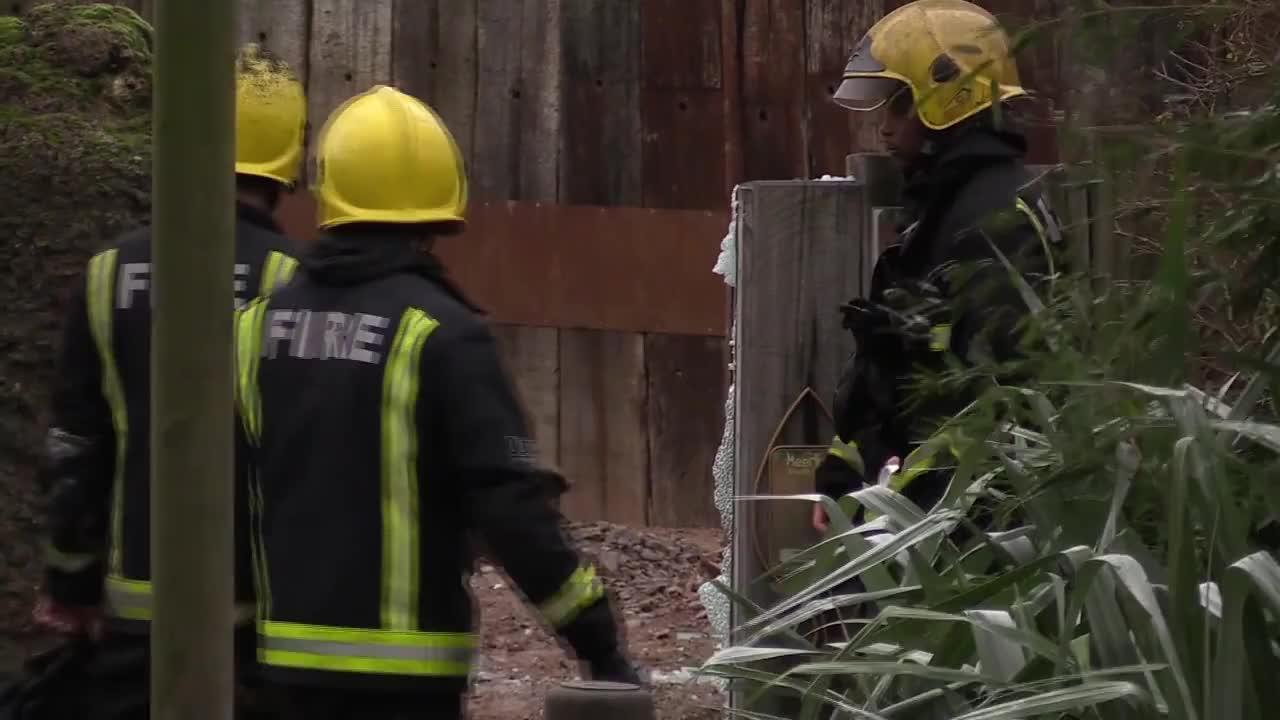 Животно загина при пожар в зоопарк в Лондон, 9 души са ранени