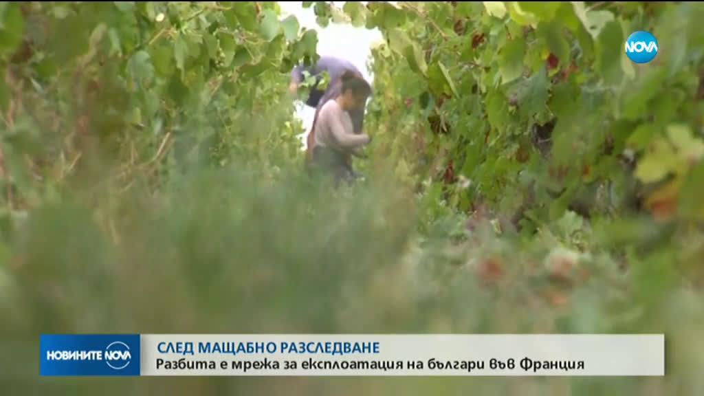 167 българи - жертви на трудова експлоатация във Франция