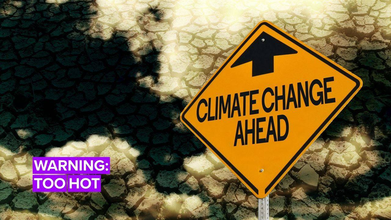 Global Warming 2050: It\'s Getting Hot in Here