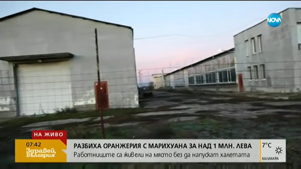 Сръбски инвеститор щял да произвежда каравани на мястото на наркооранжерията за 1 млн. лева