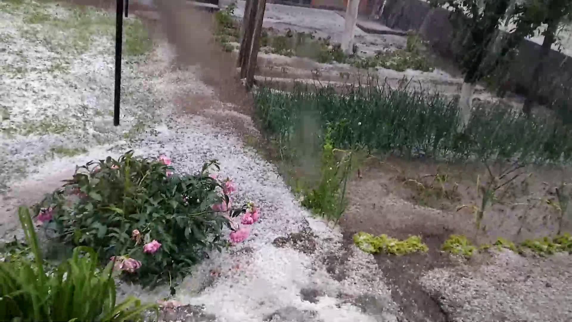 """От """"Моята новина"""": Дъжд и градушка в с. Славовица"""