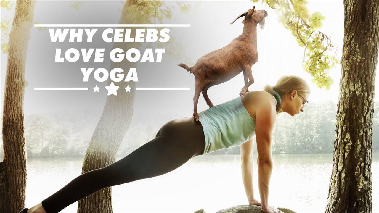 Най-странните йога упражнения в Холивуд