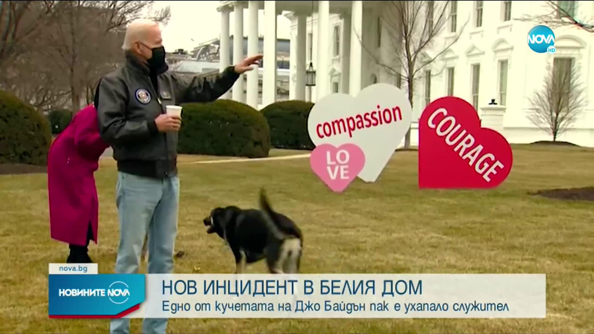 Кучето на Байдън отново ухапа човек