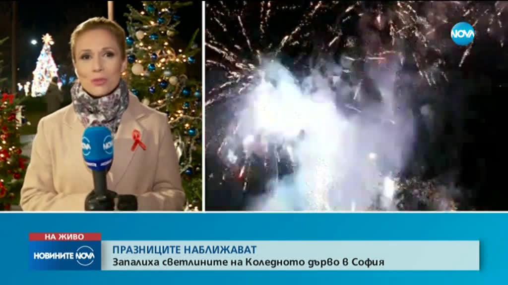 Светлините на коледната елха в София грейнаха