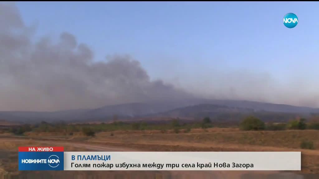 Голям пожар обхвана борова гора край Нова Загора
