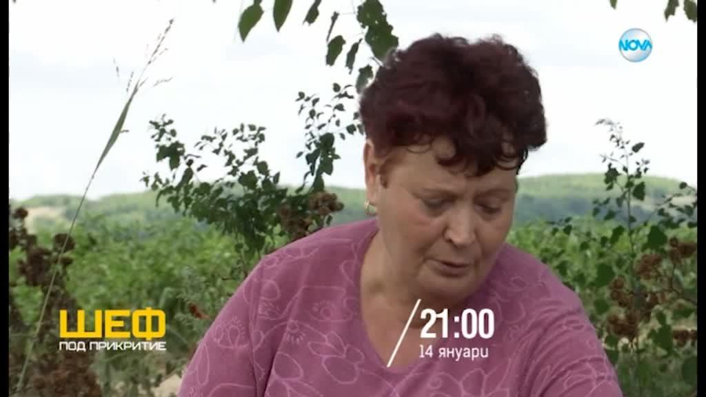 """""""Шеф под прикритие"""" - сезон 3 - от 14 януари в 21.00 ч. по NOVA"""