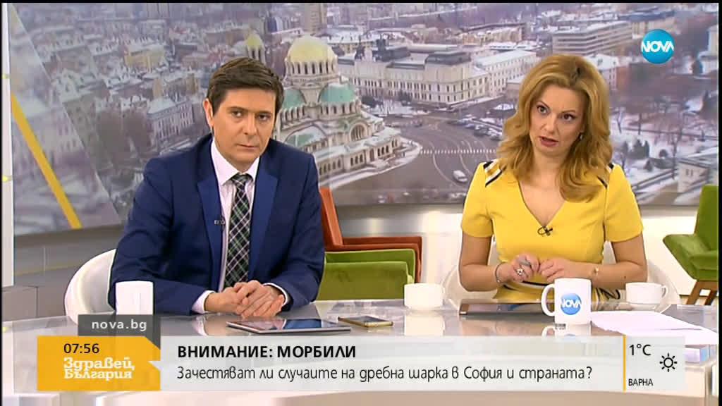 Проф. Кантарджиев: 5 са случаите на морбили в България