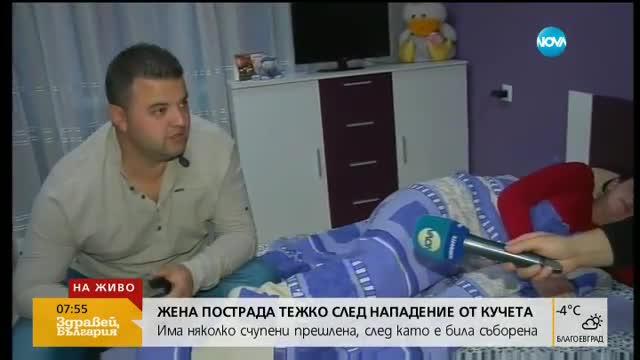 Жена със счупени прешлени след нападение от бездомни кучета