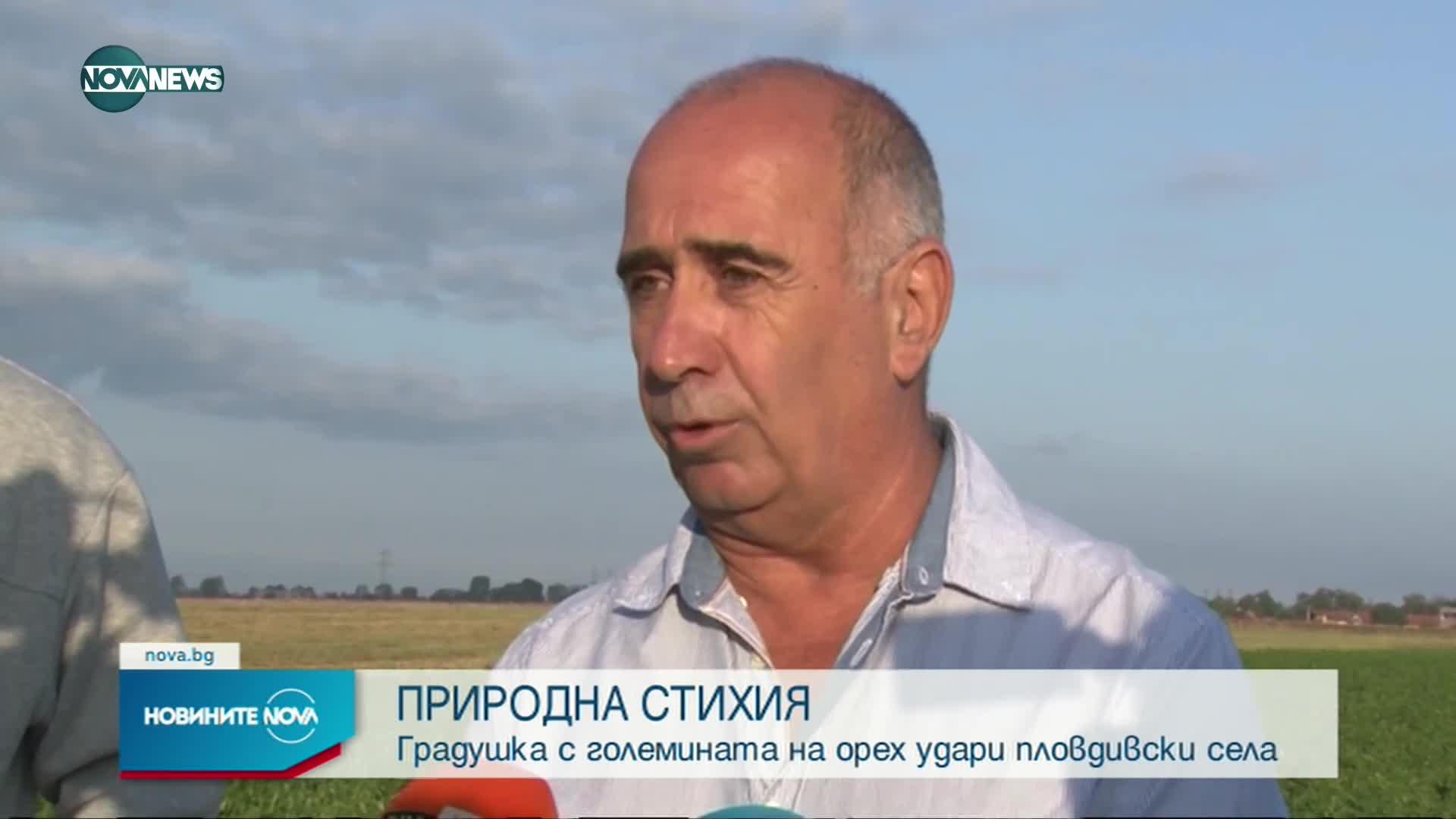 Опустошителна градушка в Пловдивско, земеделци искат обезщетения