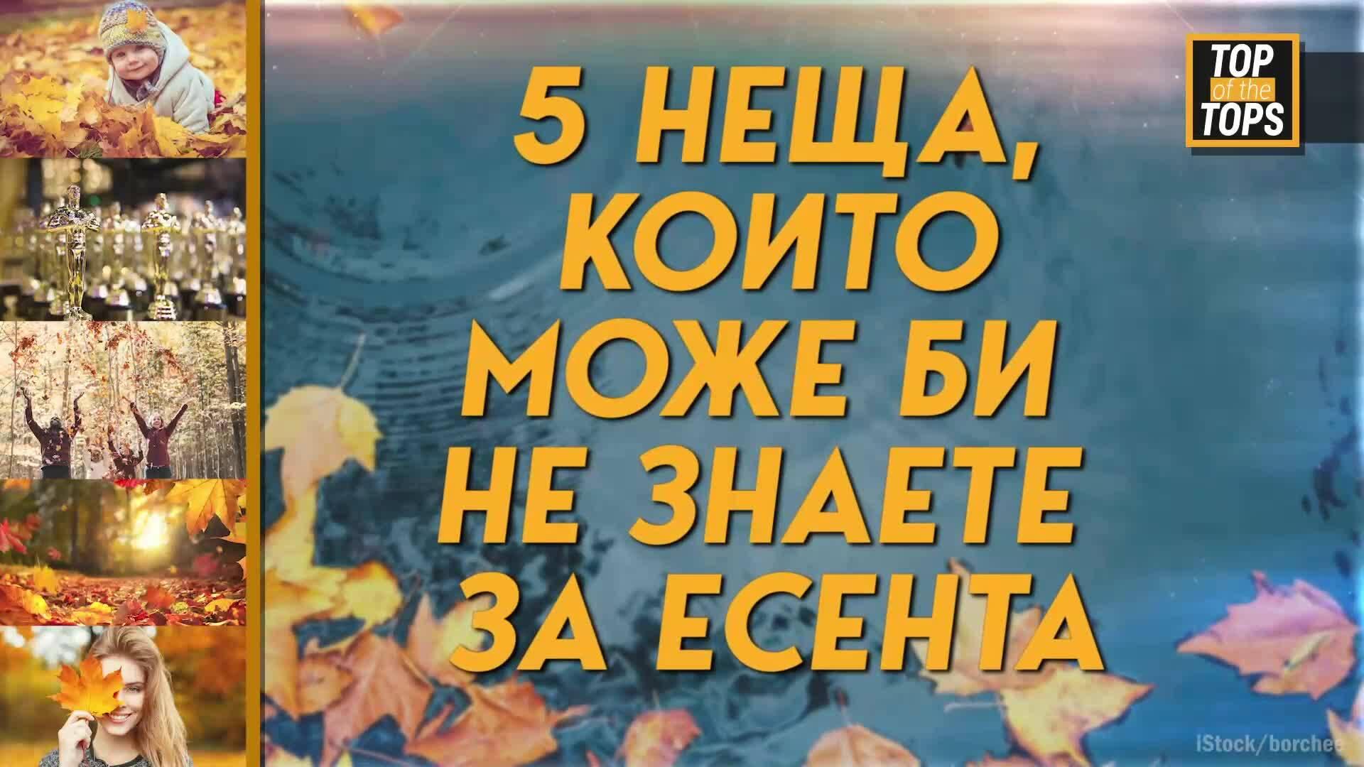 5 неща, които може би не знаете за есента